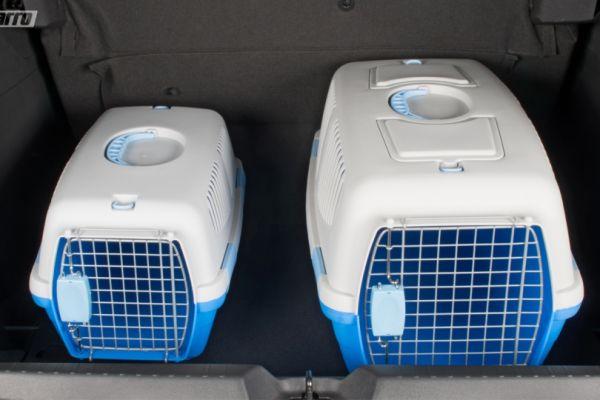 Chevrolet lança acessórios para evitar multas no trânsito ao transportar PETs